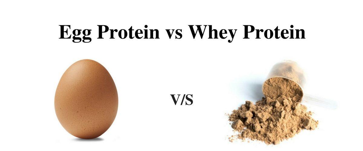 Liquid Egg White vs. Whey Protein Powder 1